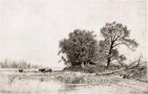 Tekening 'Bouquet' Zweeloo van A. Stengelin