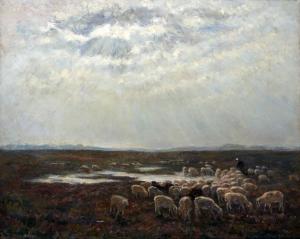 Heide bij Aalden