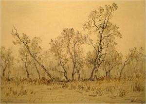 Landschap Aalden/Zweeloo vanAlphonse Stengelin