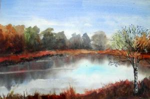Veen landschap van Anne Tromp